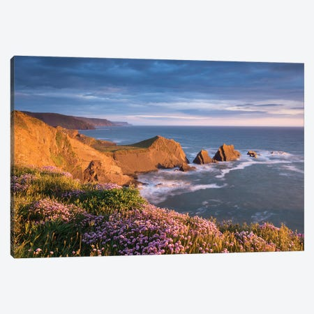 Hartland Coast Canvas Print #ABU123} by Adam Burton Canvas Artwork