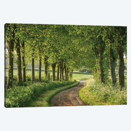 Country Ways Canvas Print #ABU12} by Adam Burton Canvas Wall Art