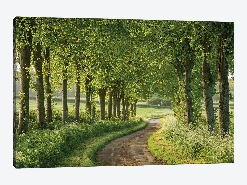 Country Ways by Adam Burton 1-piece Canvas Art