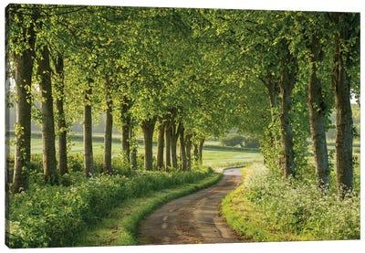 Country Ways Canvas Art Print