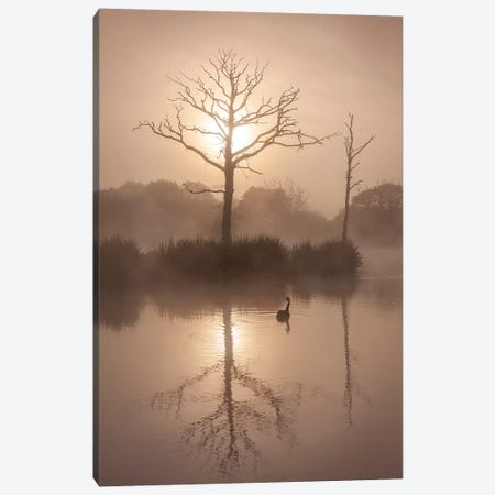 Morning Stillness Canvas Print #ABU149} by Adam Burton Canvas Wall Art