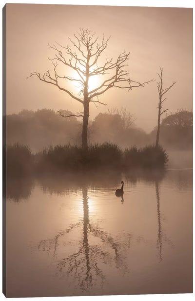 Morning Stillness Canvas Art Print