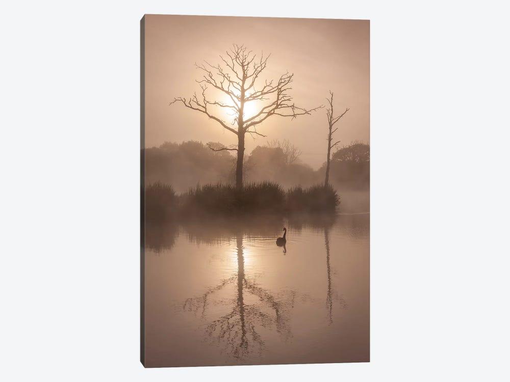Morning Stillness by Adam Burton 1-piece Canvas Art