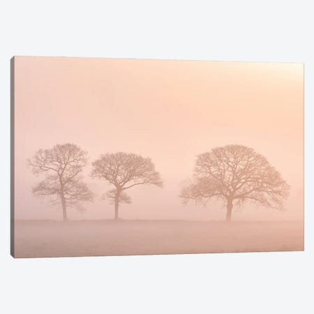 The Peach Trees Canvas Print #ABU162} by Adam Burton Canvas Art
