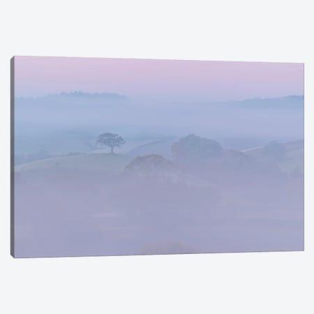 Pretty In Pink Canvas Print #ABU188} by Adam Burton Canvas Wall Art