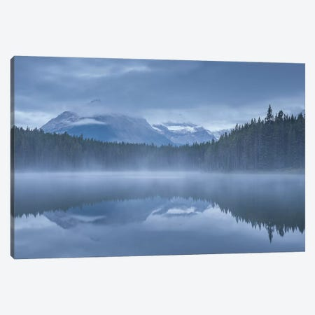 Herbert Lake I Canvas Print #ABU23} by Adam Burton Art Print