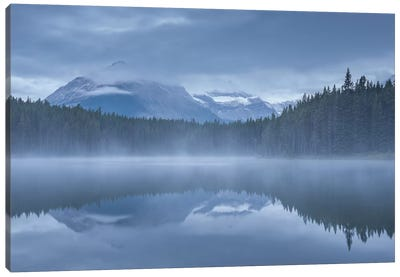Herbert Lake I Canvas Art Print
