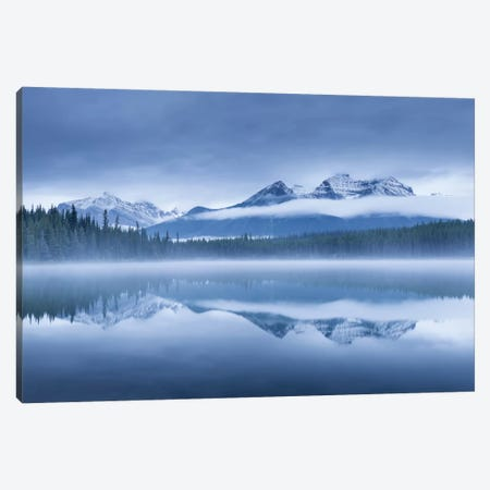 Herbert Lake II Canvas Print #ABU24} by Adam Burton Canvas Wall Art