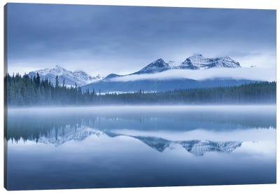 Herbert Lake II Canvas Art Print