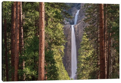 Lower Yosemite Falls Canvas Print #ABU26