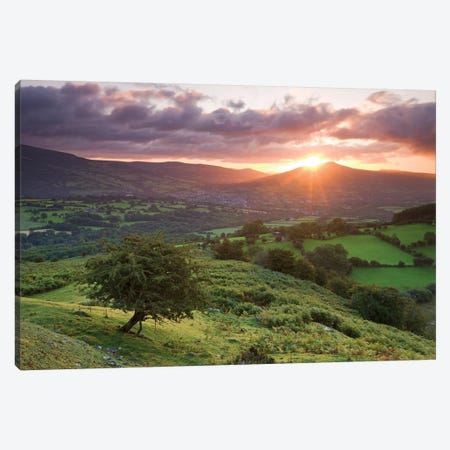 Sugarloaf Sunrise Canvas Print #ABU40} by Adam Burton Art Print