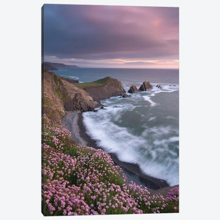 The Pink Coast Canvas Print #ABU49} by Adam Burton Canvas Art Print