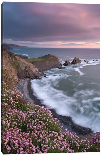 The Pink Coast Canvas Art Print
