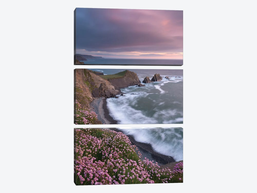 The Pink Coast by Adam Burton 3-piece Canvas Artwork