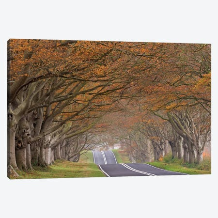 Through the Tunnel Canvas Print #ABU52} by Adam Burton Canvas Wall Art