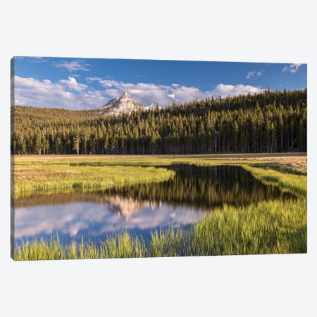 Tuolumne Meadows Canvas Print #ABU57} by Adam Burton Art Print