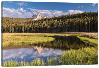 Tuolumne Meadows Canvas Art Print
