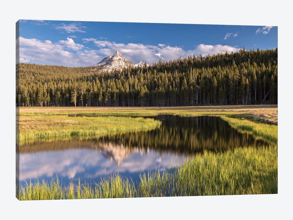 Tuolumne Meadows by Adam Burton 1-piece Canvas Art Print