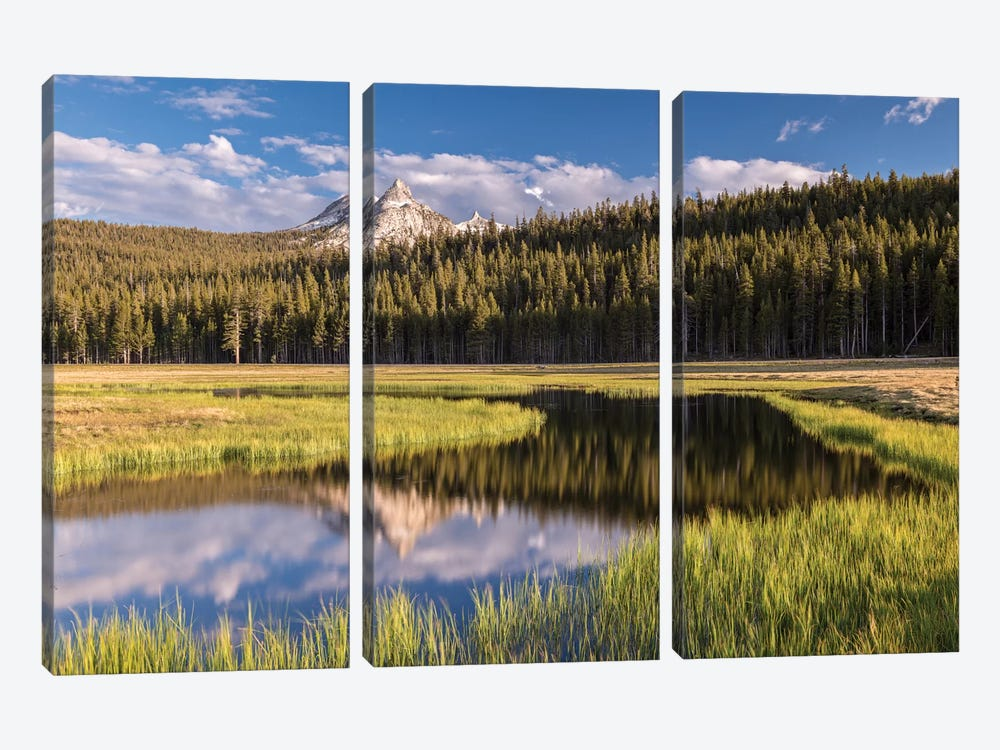 Tuolumne Meadows by Adam Burton 3-piece Canvas Art Print