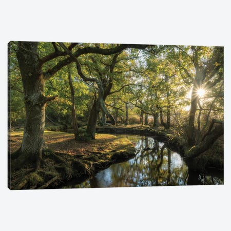 Approaching Lorien Canvas Print #ABU64} by Adam Burton Canvas Wall Art