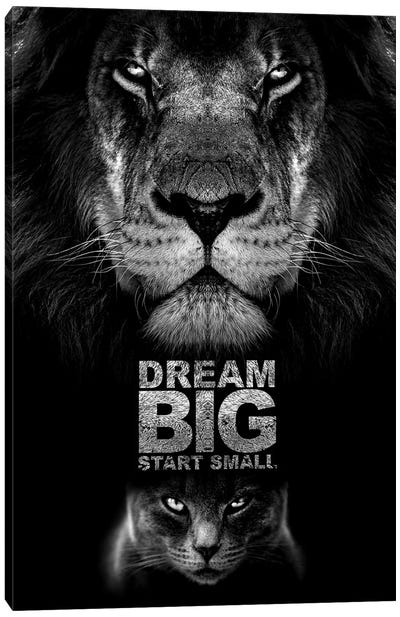 Dream Big Start Small Motivational Quote Canvas Art Print