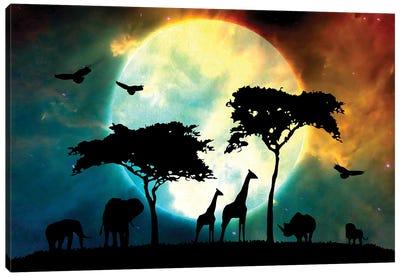 Midnight Safari Canvas Art Print