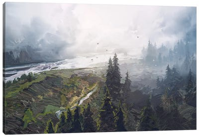 Foggy Forest Canvas Art Print