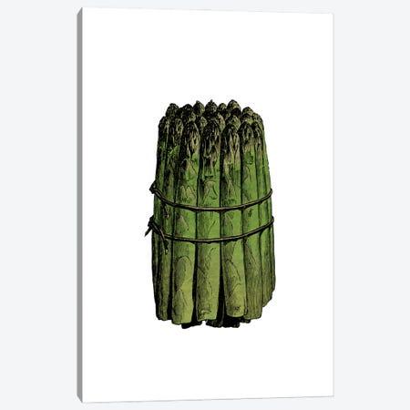 Asparagus Canvas Print #ACE56} by Alchera Design Posters Canvas Art