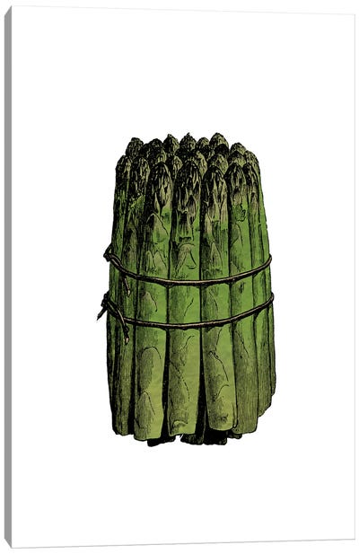 Asparagus Canvas Art Print