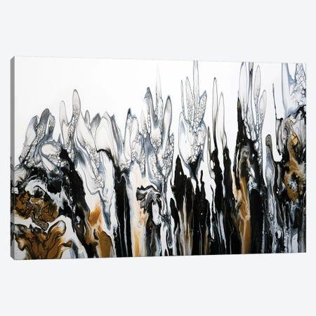 Crocus Canvas Print #ACK104} by Brigitte Ackland Art Print