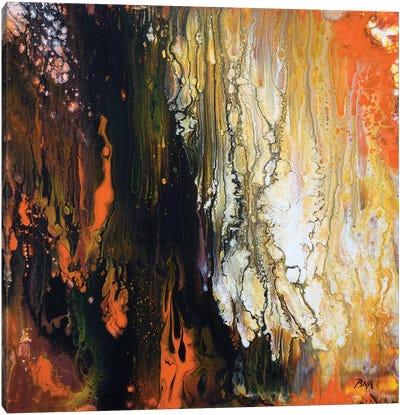 Burning Embers Canvas Art Print