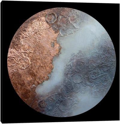Burnished Moon Canvas Art Print