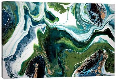 Rockpool Canvas Art Print