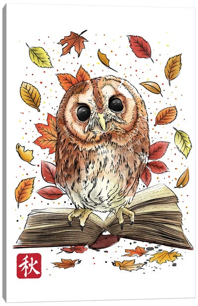 Owl Leaves And Books Canvas Art Print
