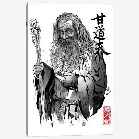 The Grey Wizard Canvas Print #ACM167} by Antonio Camarena Art Print