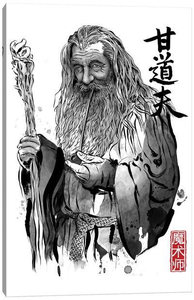 The Grey Wizard Canvas Art Print