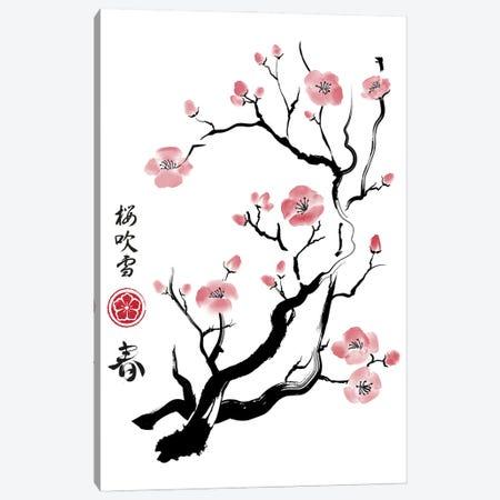 Spring Colors In Japan Canvas Print #ACM174} by Antonio Camarena Canvas Art