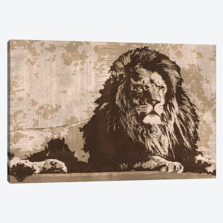 Lion Canvas Print #ACP12} by Andrew Cooper Canvas Wall Art