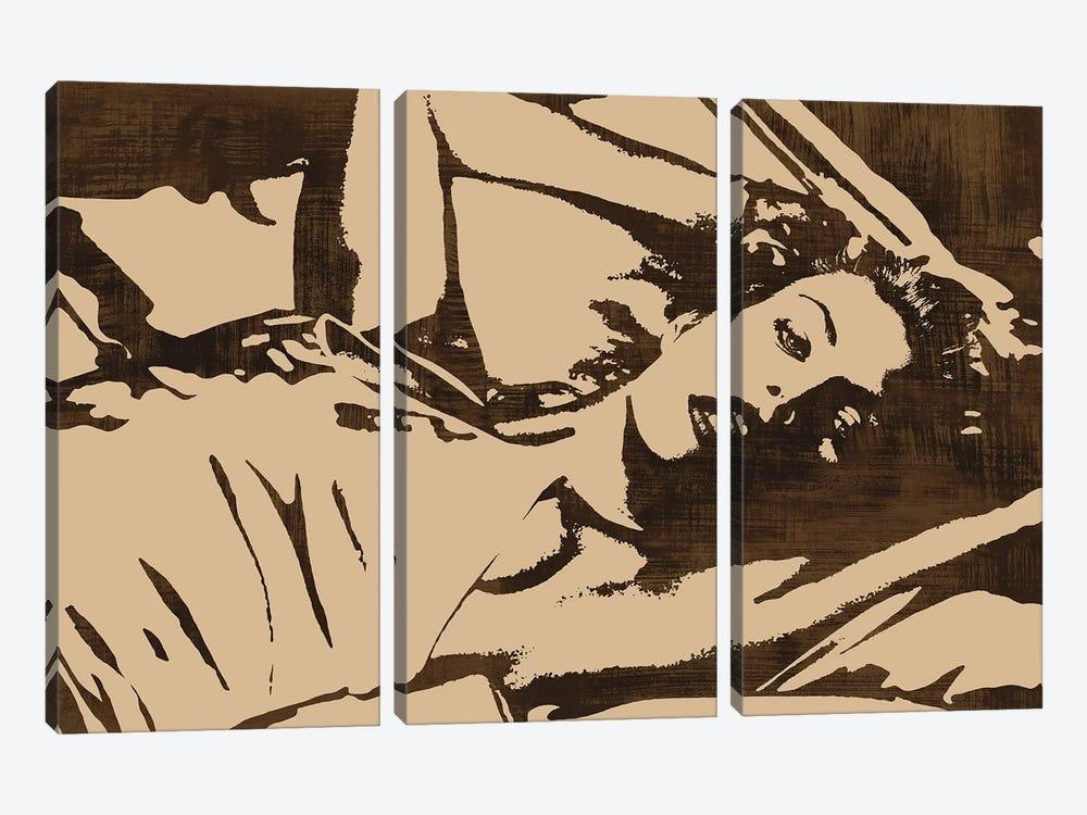 En Vogue by Andrew Cooper 3-piece Canvas Art
