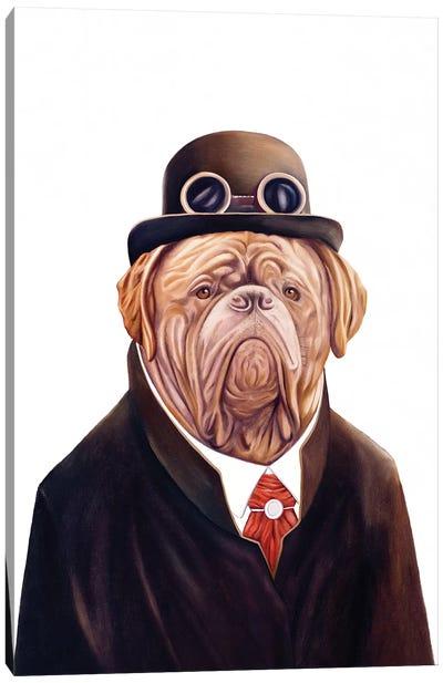 Dogue De Bordeaux Canvas Art Print
