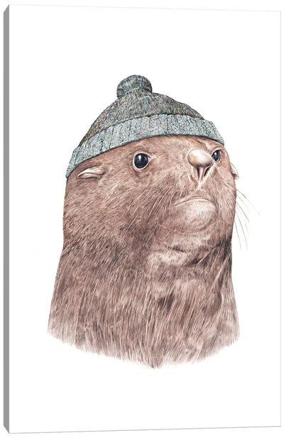 Fur Seal Canvas Art Print