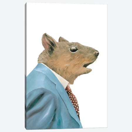 Grey Squirrel Canvas Print #ACR21} by Animal Crew Canvas Print
