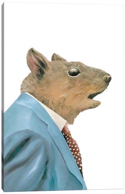 Grey Squirrel Canvas Art Print