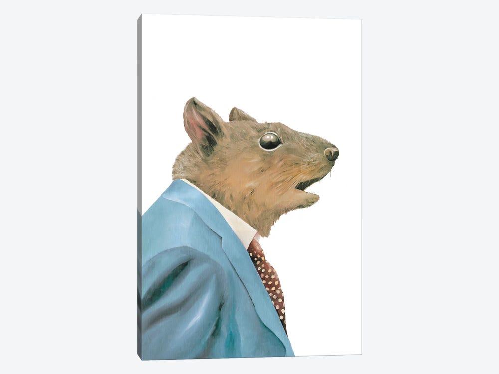 Grey Squirrel by Animal Crew 1-piece Canvas Print