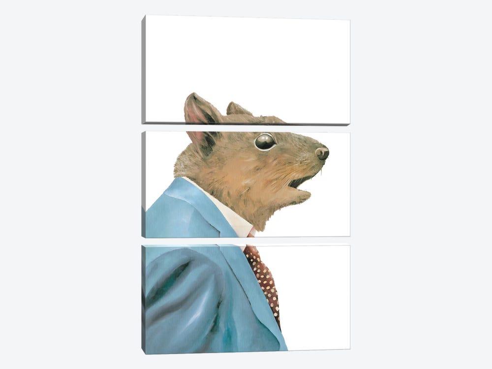 Grey Squirrel by Animal Crew 3-piece Art Print