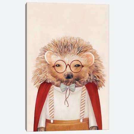 Hedgehog Canvas Print #ACR23} by Animal Crew Canvas Art Print