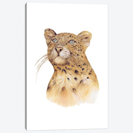 Leopard Canvas Print #ACR30} by Animal Crew Canvas Art