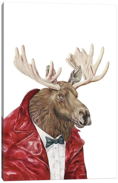 Moose In Leather Canvas Art Print