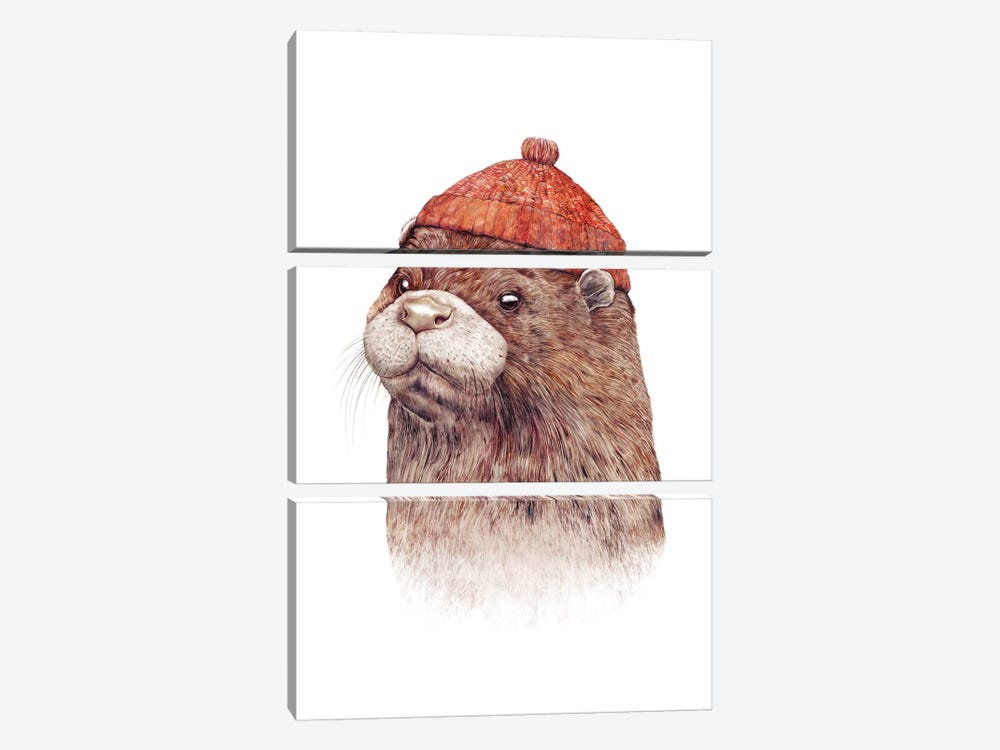 Otter by Animal Crew 3-piece Canvas Art Print