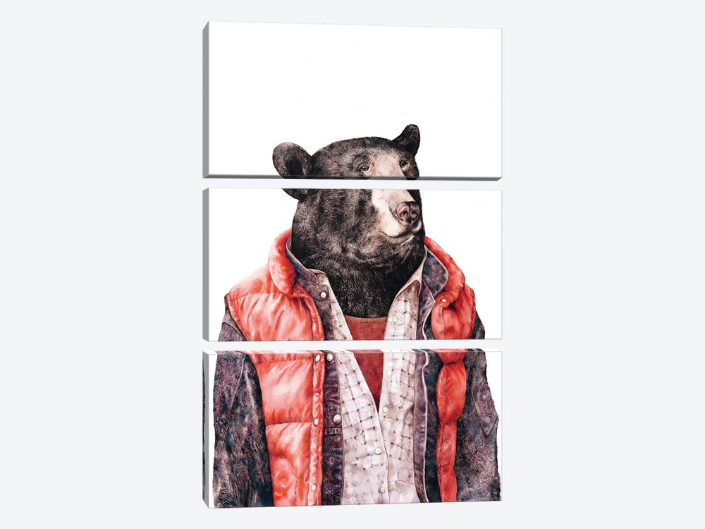 Black Bear by Animal Crew 3-piece Canvas Artwork
